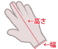 手袋のサイズ